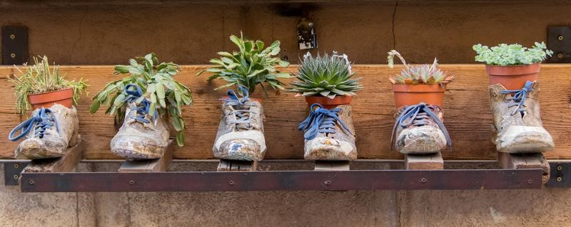Turn Old Shoes Into Flower Pots